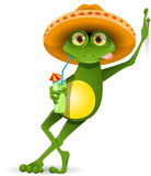 Frog in a hat. Green frog in a sombrero and a cocktail Stock Photography