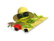Frog in hat with glasses on a towel Royalty Free Stock Photography