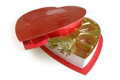 Frog heart. A frog climbing out of a heart shaped candy box Royalty Free Stock Image