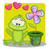 Frog with hearts Stock Images