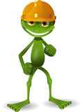 Frog in a helmet Stock Image