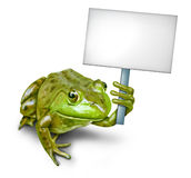 Frog Holding a Blank Sign Stock Photography