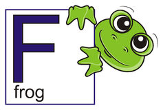 Frog holding a sign with the letter F Royalty Free Stock Image
