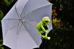 Frog holding an umbrella