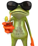 Frog on holidays Royalty Free Stock Image
