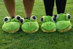 Frog home shoes Royalty Free Stock Photography