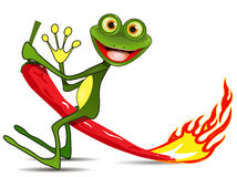 Frog on hot pepper Stock Image