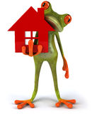 Frog and house Stock Images