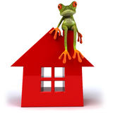 Frog and house Stock Image