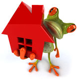 Frog and house Royalty Free Stock Photos