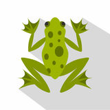 Frog icon, flat style Stock Photography