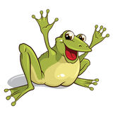 Frog. Illustration of a smiling frog isolated on a white background royalty free illustration