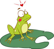 Frog illustration Stock Photo