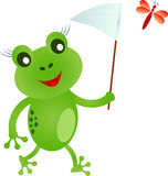 Frog Iluustration, Cartoon Frog Illustrations. Walking green fly catching frog cartoon,  fauna, flora, smiling frog, flowers,  insect, orange insect, nature Royalty Free Stock Photography
