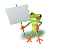 Frog : insert your text Stock Photos