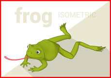 Frog isometric flat vector 3d Royalty Free Stock Images