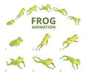 Frog jumping animation. Various keyframes for green animal. Vector frog animation, jump amphibian animated illustration vector illustration