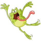 Frog jumping Stock Image