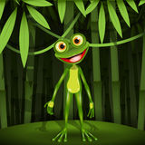 Frog in a jungle Stock Photo