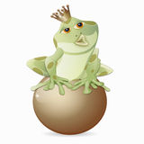 Frog king. Illustration of a frog with crown , isolated Royalty Free Stock Images