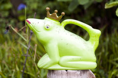 Frog King Royalty Free Stock Photography