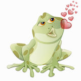 Frog kiss Stock Photos