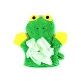 Frog knitted glove Royalty Free Stock Photo
