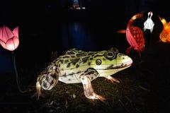 Frog lantern Royalty Free Stock Photos