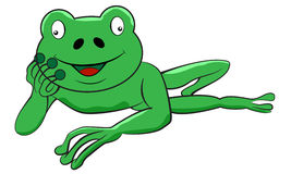 Frog laying down Royalty Free Stock Photo
