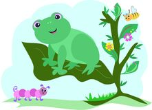 Frog on a Leaf with Caterpillar and Bee Stock Photography