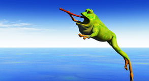 Frog leaps Stock Image