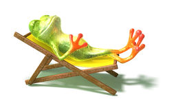 Frog in a long-chair Stock Photos
