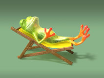 Frog in a long-chair Royalty Free Stock Photo