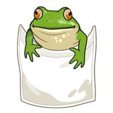 Frog looking out of t-shirt pocket funny humorous vector cartoon. Illustration. Nature, outdoors, wildlife, amphibian themed design element for clothes royalty free illustration