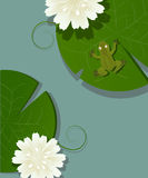 Frog and lotus. Illustration of a little frog over a lotus leave in the pod Stock Photos