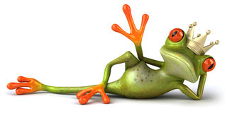 Frog in love Royalty Free Stock Image