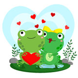 Frog In Love Royalty Free Stock Photography