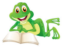 A frog lying while reading a book Stock Photos