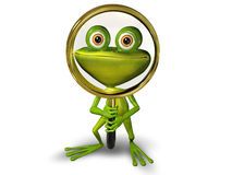 Frog with a magnifying glass Stock Images
