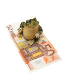 Frog and money on a white background (isolated). Figurine of a frog and money on a white background (isolated Royalty Free Stock Photography