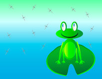 Frog and mosquitos. Frog sit on the waterlily and look on mosquito Royalty Free Stock Image
