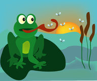 Frog and mosquitos. Vector illustration of  cartoon frog and group of mosquitos Stock Images
