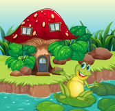 A frog and a mushroom house Stock Image