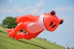 Frog orange kite Royalty Free Stock Photos