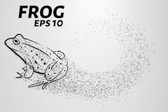 Frog of particles. The frog consists of small circles. Vector illustration Stock Image