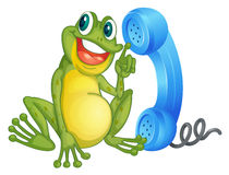 A frog with phone receiver Royalty Free Stock Photo