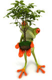 Frog with a plant Royalty Free Stock Photo