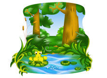 Frog pond Royalty Free Stock Photo