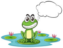 A frog at the pond with empty callout Stock Photos