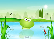 Frog in the pond. Funny illustration of frog in the pond stock illustration